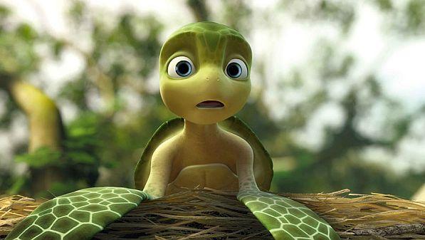 Żółwik Sammy