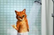 Kot w Butach - parodia reklamy Old Spice