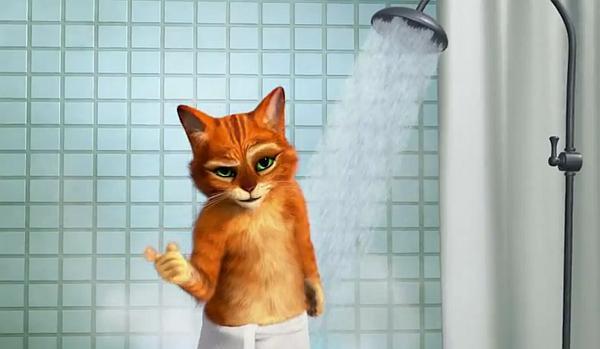 Kot W Butach Parodia Reklamy Old Spice Najlepsze Animacje I