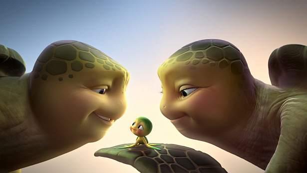 Żółwik Sammy kilkadziesiąt lat później