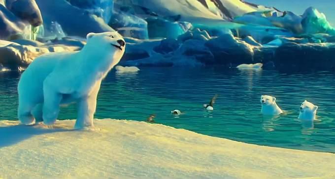 Czy polarne misie znów narozrabiają?