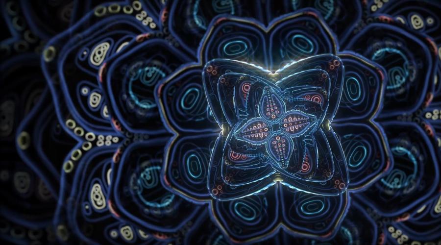 Kosmiczne kwiaty