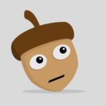 Zdjęcie profilowe Orzech Laskowy